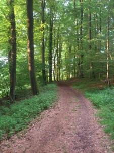 Wandelnetwerk Limburg