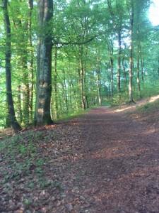 Wandelnetwerk Brabant