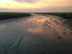 Wandelnetwerk Langs linies en kreken in Zeeuws-Vlaanderen