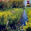 wandelkaart wijde biesbosch noord